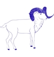 goat or ram with long horn vector image vector image
