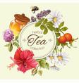Herbal tea banner vector image vector image