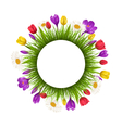 Circle frame with green grass and flowers isolated vector image vector image
