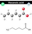 Hexanoic acid molecule vector image vector image