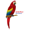 red scarlet macaw bird vector image vector image