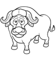 African buffalo vector image vector image