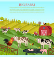cows and pigs animals at the farm summer vector image vector image