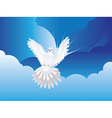 Dove in the Sky vector image