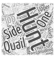 quail hunting Word Cloud Concept vector image vector image