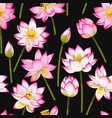 seamless pattern with lotus flowers vector image