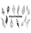 set hand drawn feathers isolated on white vector image vector image