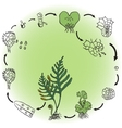 The life cycle of a fern vector image vector image