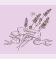 Lavender graphic banner vector image