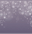 falling snow effect vector image vector image