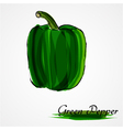 green pepper vector image vector image
