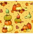 Autumn background with pumpkins for a poster vector image vector image