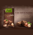 banner of milk chocolate with hazelnuts vector image vector image