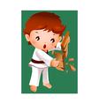 Boy breaking a board using karate vector image