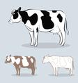 cow 4 vector image vector image