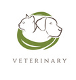 Logo template for veterinary clinic with cat and vector image