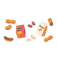 set icons peanut snack peeled and unpeeled vector image vector image