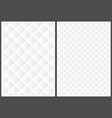 white 3d grid texture in two variations vector image
