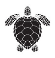 graphic sea turtle vector image vector image