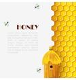 Honey Beehive Background vector image vector image