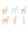 set of llamas in pastel vector image vector image