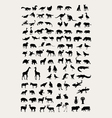 Animal Silhouette Collection vector image