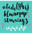brushpen style alphabet calligraphy vector image vector image