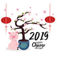 chinese year with cherry blossom and pig vector image vector image