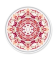 Colorful decorative plate with pattern vector image vector image