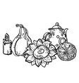 coloring page in with household autumn elements vector image