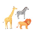lion zebra and giraffe cartoon vector image