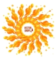 Orange paint splash circle on white background vector image vector image