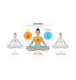 pitta dosha - ayurvedic physical constitution vector image vector image