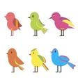 Set Color Birds vector image