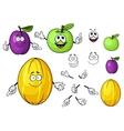 Cartoon juicy green apple melon and plum fruits vector image vector image