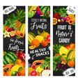 exotic fruit and garden berry blackboard banners vector image vector image