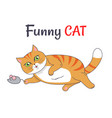 funny cat playing with mouse vector image vector image