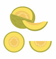 set of melons vector image