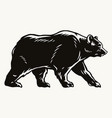 strong bear black silhouette concept vector image