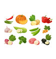 vegetables set of colored icons farm food vector image vector image