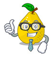 businessman bunch cartoon of juicy yellow quinces vector image