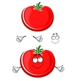 Cartoon ripe juicy red tomato vegetable vector image