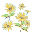 Hand-drawn chamomiles daisies Autumn flowers vector image