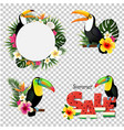 toucans set vector image vector image