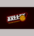volleyball mascot modern professional sport vector image vector image