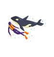 animal trainer and orca performing in public in vector image vector image
