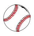 ball baseball vector image