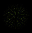 fireworks new year celebration festive night vector image
