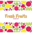 flat elements for design Fruits berries vector image