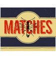 matchbox design and matches with insect in retro vector image